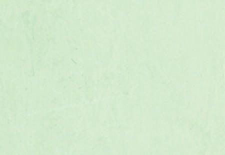 Polyclad Plus PU - Spring Fern 2810